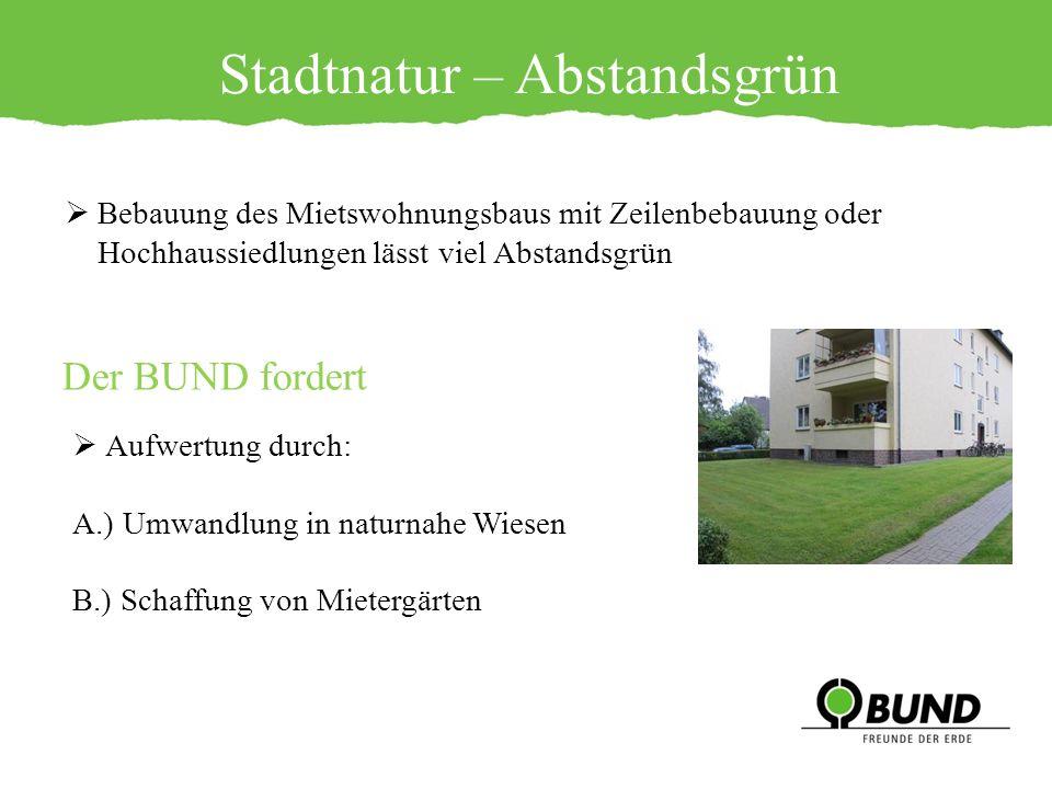 Stadtnatur – Abstandsgrün Bebauung des Mietswohnungsbaus mit Zeilenbebauung oder Hochhaussiedlungen lässt viel Abstandsgrün Der BUND fordert Aufwertun
