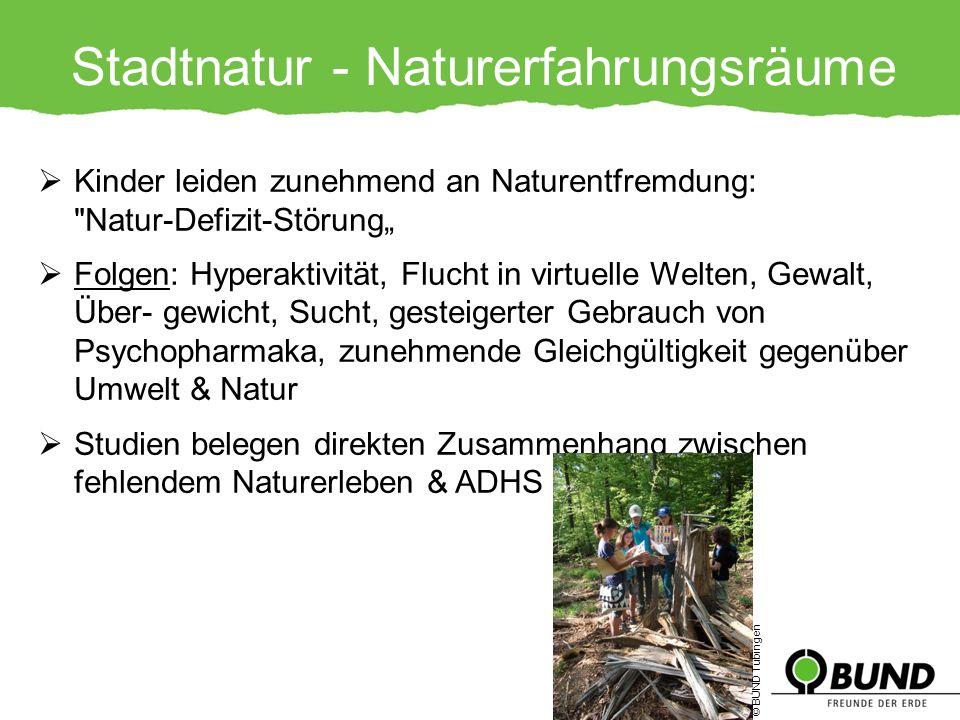 Stadtnatur - Naturerfahrungsräume Kinder leiden zunehmend an Naturentfremdung: