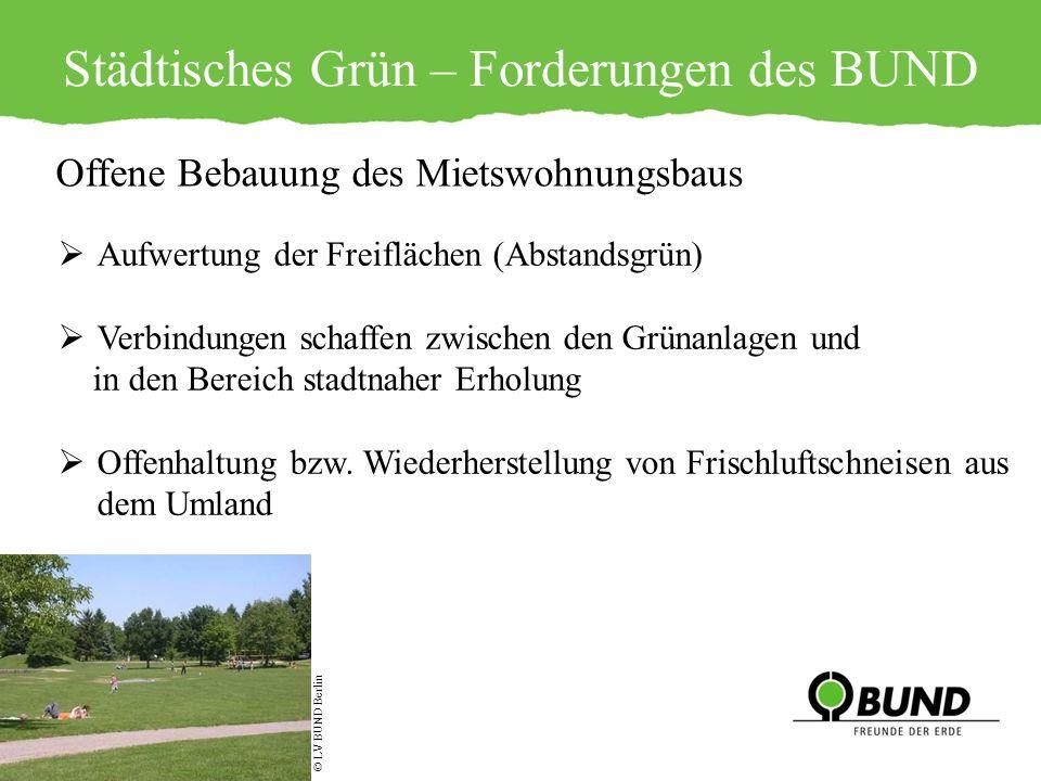 Städtisches Grün – Forderungen des BUND © LV BUND Berlin Offene Bebauung des Mietswohnungsbaus Aufwertung der Freiflächen (Abstandsgrün) Verbindungen