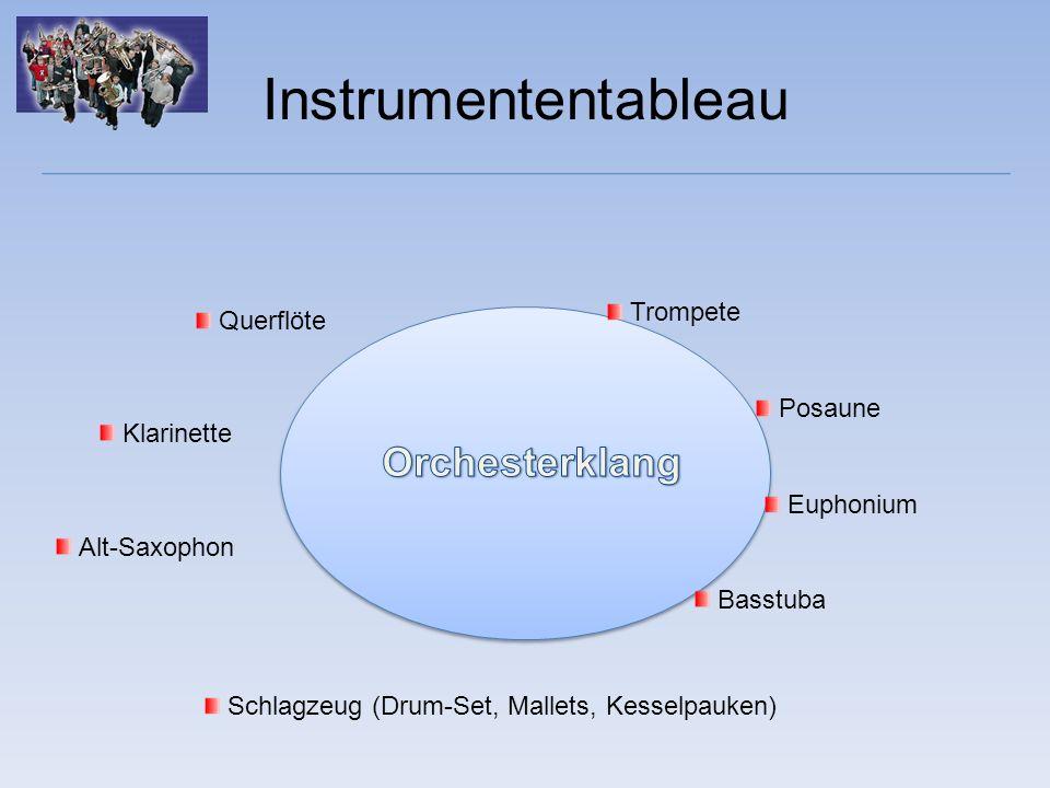 Instrumentenamortisation monatlichEUR 10,- Instrumentalunterricht in GruppenmonatlichEUR 18,- monatliche Gesamtbelastung pro ElternhausEUR 28,- incl.