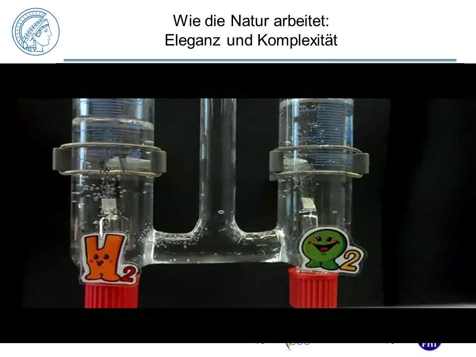 www. fhi-berlin.mpg.de www. cec.mpg.de Wie die Natur arbeitet: Eleganz und Komplexität 17 2H + + 2e - H2H2 Hydrogenase [Ni,Fe] CO 2 + 6H + + 6e - H 3