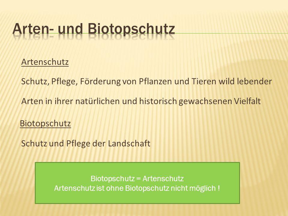 Artenschutz Schutz, Pflege, Förderung von Pflanzen und Tieren wild lebender Arten in ihrer natürlichen und historisch gewachsenen Vielfalt Biotopschutz Schutz und Pflege der Landschaft Biotopschutz = Artenschutz Artenschutz ist ohne Biotopschutz nicht möglich !