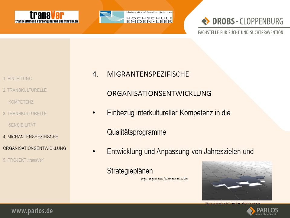 4.MIGRANTENSPEZIFISCHE ORGANISATIONSENTWICKLUNG Einbezug interkultureller Kompetenz in die Qualitätsprogramme Entwicklung und Anpassung von Jahresziel