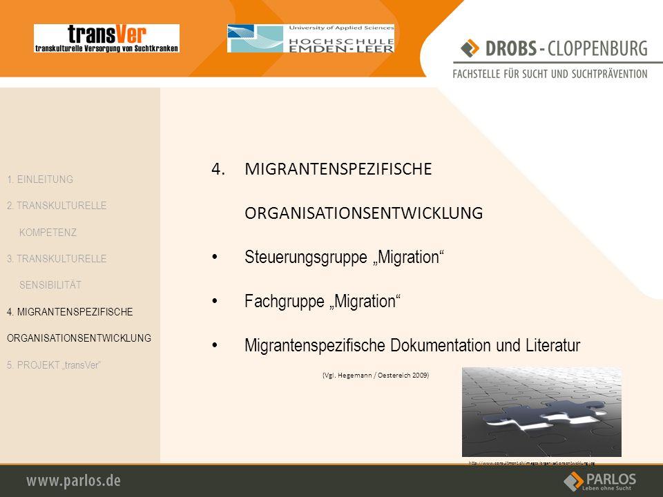 4.MIGRANTENSPEZIFISCHE ORGANISATIONSENTWICKLUNG Steuerungsgruppe Migration Fachgruppe Migration Migrantenspezifische Dokumentation und Literatur http: