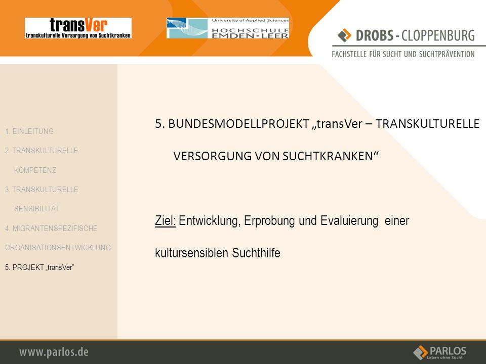 5. BUNDESMODELLPROJEKT transVer – TRANSKULTURELLE VERSORGUNG VON SUCHTKRANKEN Ziel: Entwicklung, Erprobung und Evaluierung einer kultursensiblen Sucht