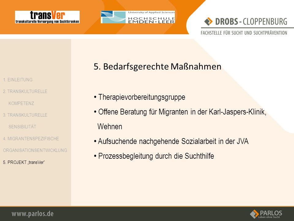 5. Bedarfsgerechte Maßnahmen Therapievorbereitungsgruppe Offene Beratung für Migranten in der Karl-Jaspers-Klinik, Wehnen Aufsuchende nachgehende Sozi