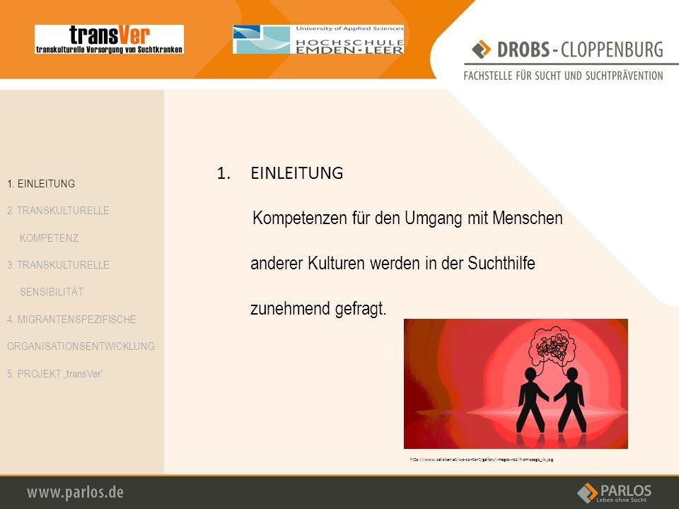 1.EINLEITUNG Kompetenzen für den Umgang mit Menschen anderer Kulturen werden in der Suchthilfe zunehmend gefragt. http://www.caliskan.at/wp-content/ga