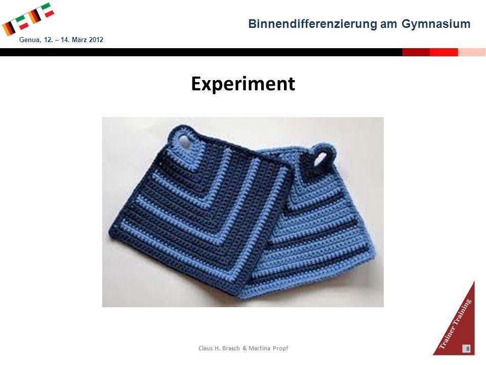 Binnendifferenzierung am Gymnasium Genua, 12. – 14. März 2012 Claus H. Brasch & Martina Propf 8 Experiment