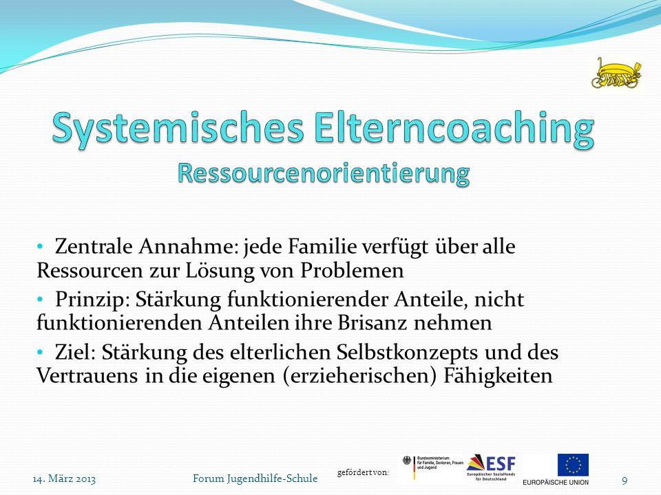 gefördert von: Zentrale Annahme: jede Familie verfügt über alle Ressourcen zur Lösung von Problemen Prinzip: Stärkung funktionierender Anteile, nicht