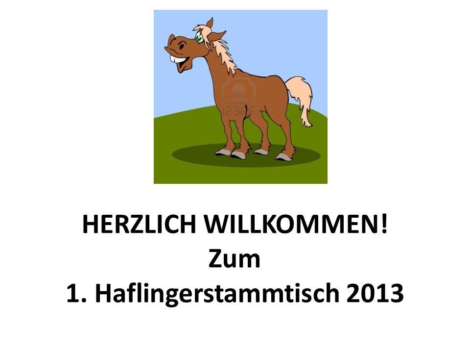 HERZLICH WILLKOMMEN! Zum 1. Haflingerstammtisch 2013