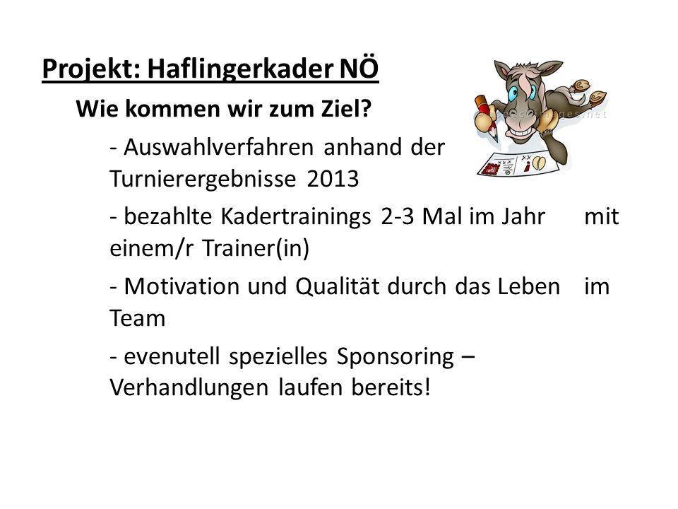 Projekt: Haflingerkader NÖ Wie kommen wir zum Ziel? - Auswahlverfahren anhand der Turnierergebnisse 2013 - bezahlte Kadertrainings 2-3 Mal im Jahr mit