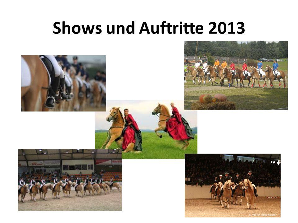 Shows und Auftritte 2013