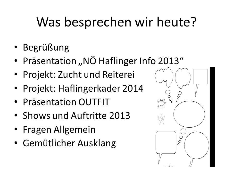 Was besprechen wir heute? Begrüßung Präsentation NÖ Haflinger Info 2013 Projekt: Zucht und Reiterei Projekt: Haflingerkader 2014 Präsentation OUTFIT S
