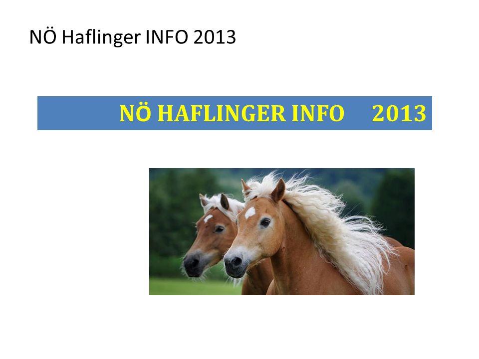 NÖ Haflinger INFO 2013 N Ö HAFLINGER INFO 2013