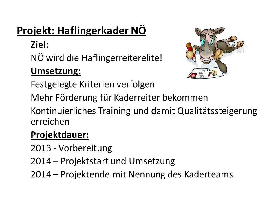 Projekt: Haflingerkader NÖ Ziel: NÖ wird die Haflingerreiterelite.