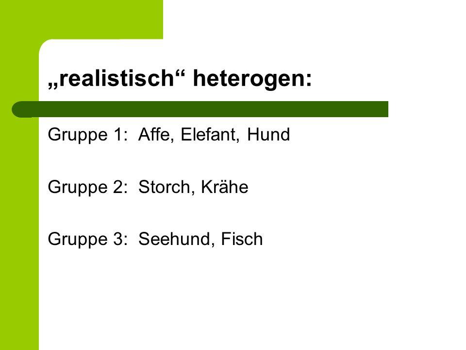 realistisch heterogen: Gruppe 1: Affe, Elefant, Hund Gruppe 2: Storch, Krähe Gruppe 3: Seehund, Fisch