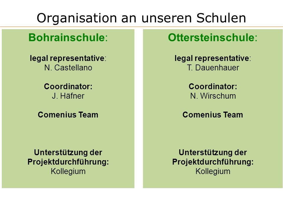 Organisation an unseren Schulen Bohrainschule: legal representative: N. Castellano Coordinator: J. Häfner Comenius Team Unterstützung der Projektdurch