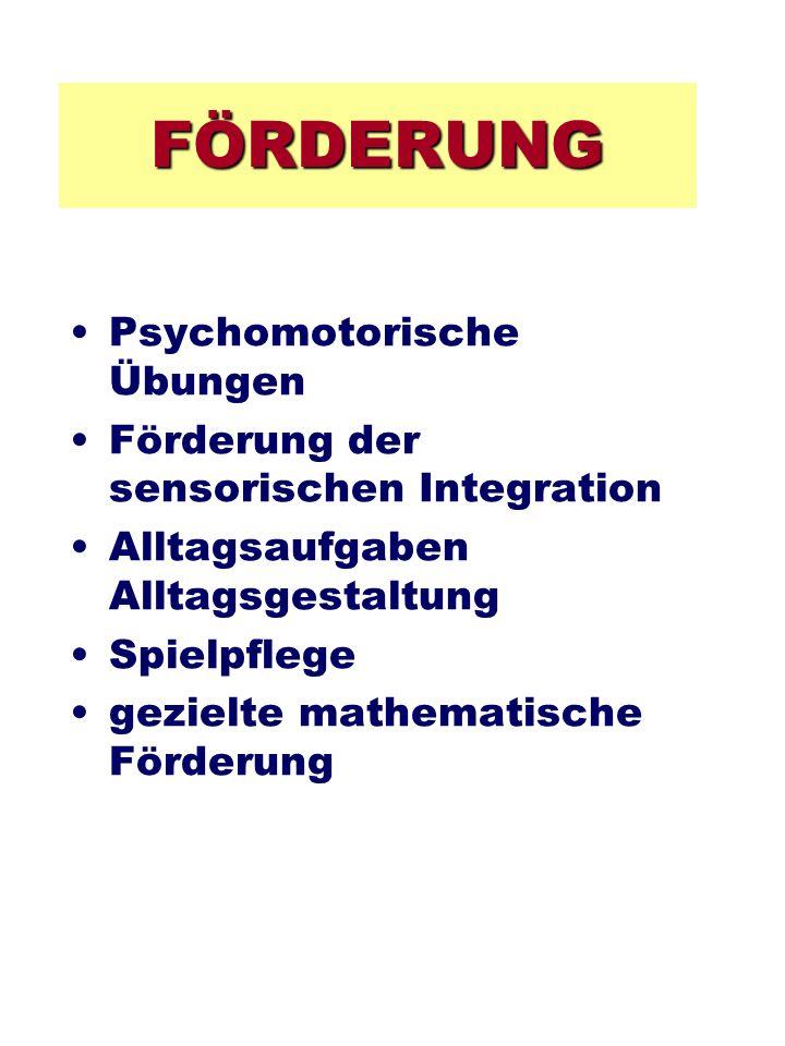 FÖRDERUNG Psychomotorische Übungen Förderung der sensorischen Integration Alltagsaufgaben Alltagsgestaltung Spielpflege gezielte mathematische Förderu