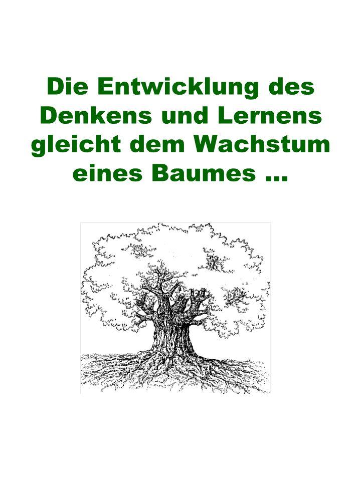 Die Entwicklung des Denkens und Lernens gleicht dem Wachstum eines Baumes...