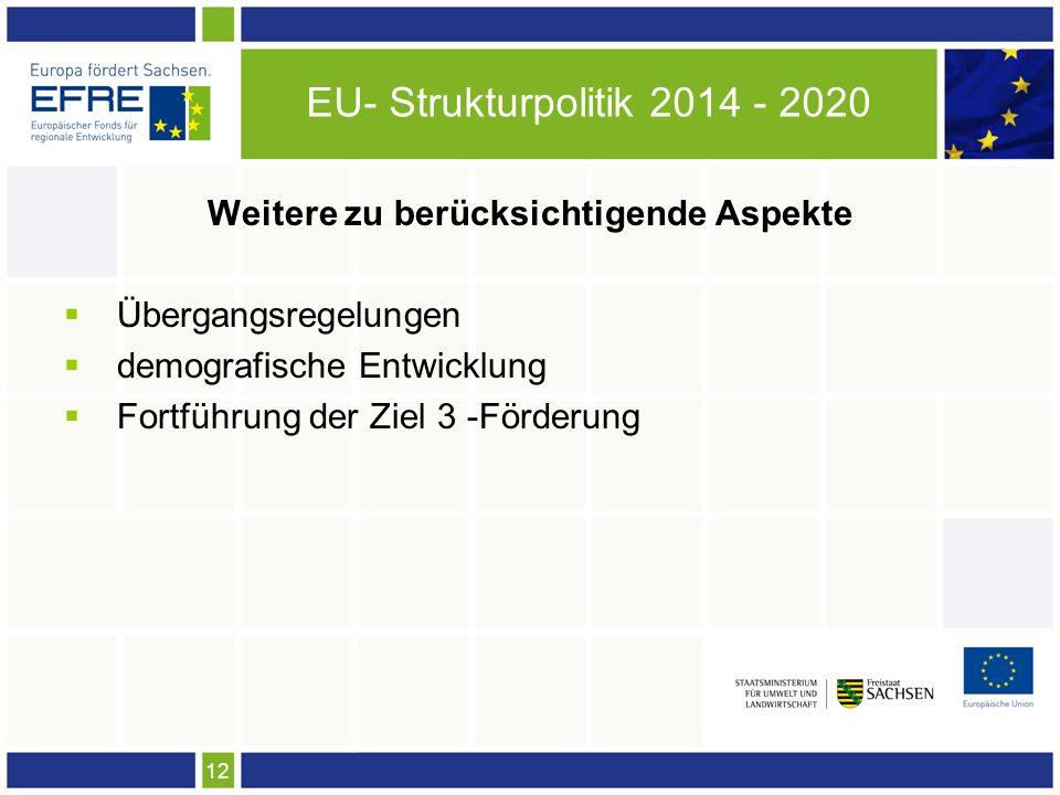 12 EU- Strukturpolitik 2014 - 2020 Weitere zu berücksichtigende Aspekte Übergangsregelungen demografische Entwicklung Fortführung der Ziel 3 -Förderung