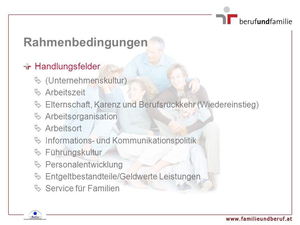 Rahmenbedingungen Handlungsfelder (Unternehmenskultur) Arbeitszeit Elternschaft, Karenz und Berufsrückkehr (Wiedereinstieg) Arbeitsorganisation Arbeit