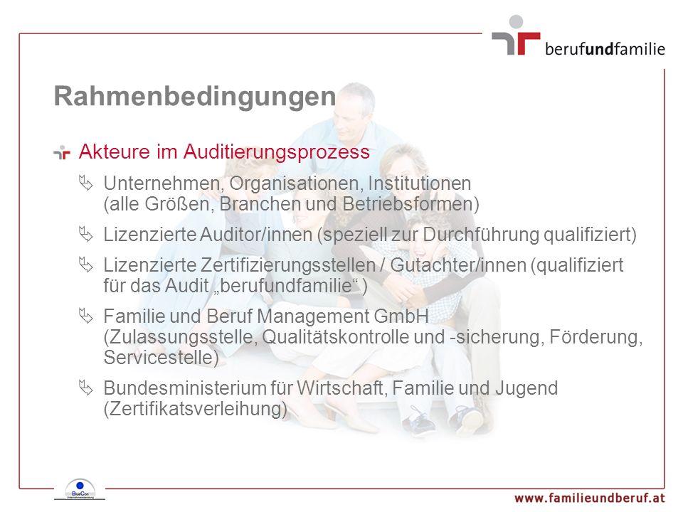 Rahmenbedingungen Akteure im Auditierungsprozess Unternehmen, Organisationen, Institutionen (alle Größen, Branchen und Betriebsformen) Lizenzierte Aud
