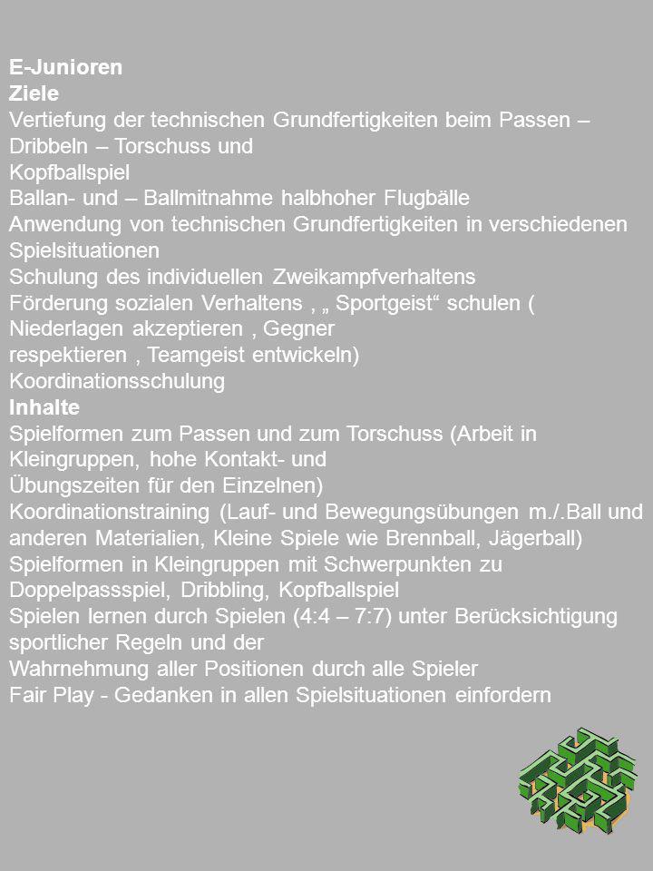 E-Junioren Ziele Vertiefung der technischen Grundfertigkeiten beim Passen – Dribbeln – Torschuss und Kopfballspiel Ballan- und – Ballmitnahme halbhohe