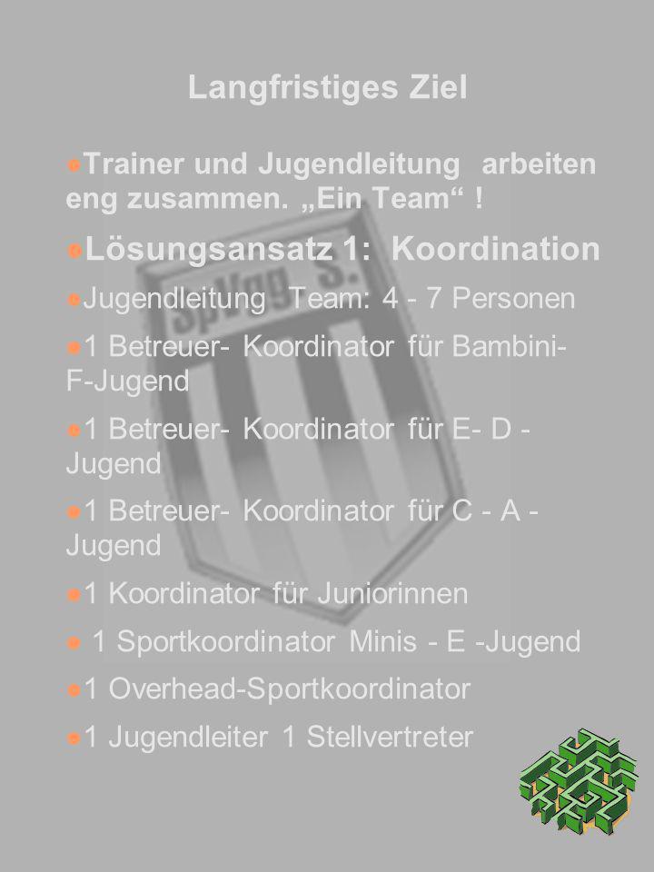 Langfristiges Ziel Trainer und Jugendleitung arbeiten eng zusammen. Ein Team ! Lösungsansatz 1: Koordination Jugendleitung Team: 4 - 7 Personen 1 Betr