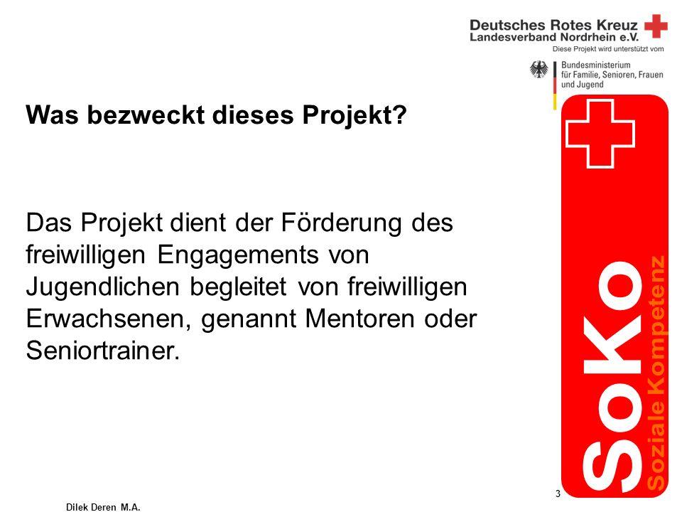 Dilek Deren M.A. 3 Was bezweckt dieses Projekt.