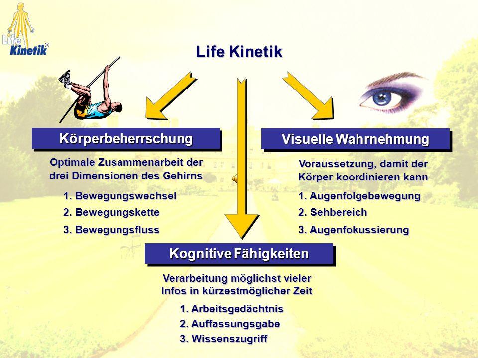 Fokussierung Aktives Denken Denken Voraussicht Ausdruck Wahl Grobdaten Wahrnehmung Ein-druck Intuition vornehinten ®