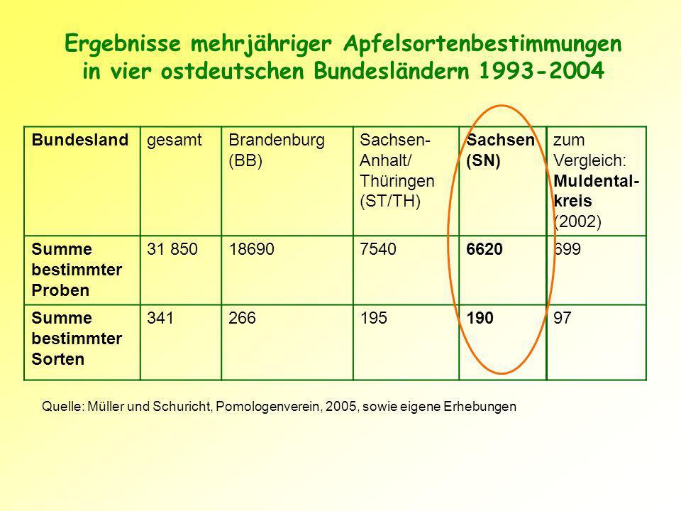 Ergebnisse mehrjähriger Apfelsortenbestimmungen in vier ostdeutschen Bundesländern 1993-2004 BundeslandgesamtBrandenburg (BB) Sachsen- Anhalt/ Thüringen (ST/TH) Sachsen (SN) zum Vergleich: Muldental- kreis (2002) Summe bestimmter Proben 31 8501869075406620699 Summe bestimmter Sorten 34126619519097 Quelle: Müller und Schuricht, Pomologenverein, 2005, sowie eigene Erhebungen