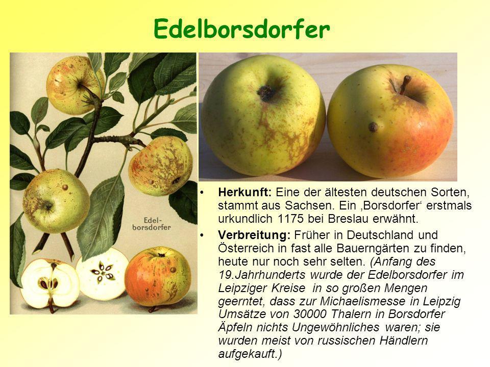 Edelborsdorfer Herkunft: Eine der ältesten deutschen Sorten, stammt aus Sachsen.