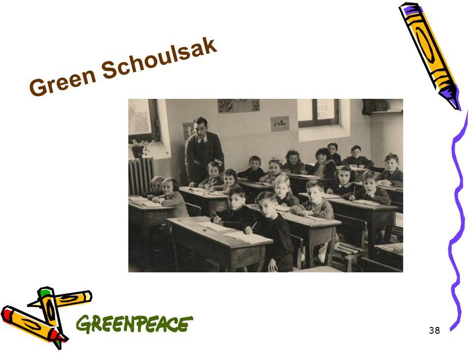 38 Green Schoulsak