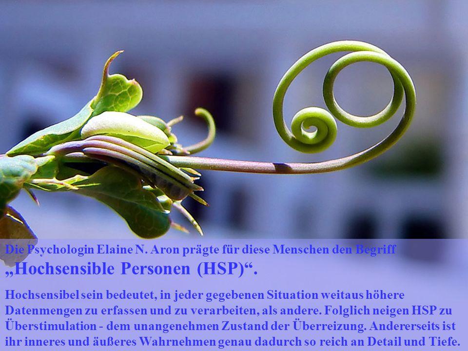 Die Psychologin Elaine N. Aron prägte für diese Menschen den Begriff Hochsensible Personen (HSP). Hochsensibel sein bedeutet, in jeder gegebenen Situa