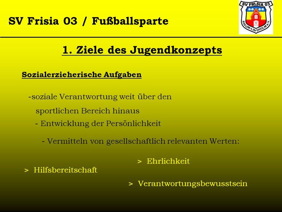 SV Frisia 03 / Fußballsparte Sozialerzieherische Aufgaben -soziale Verantwortung weit über den sportlichen Bereich hinaus - Vermitteln von gesellschaf