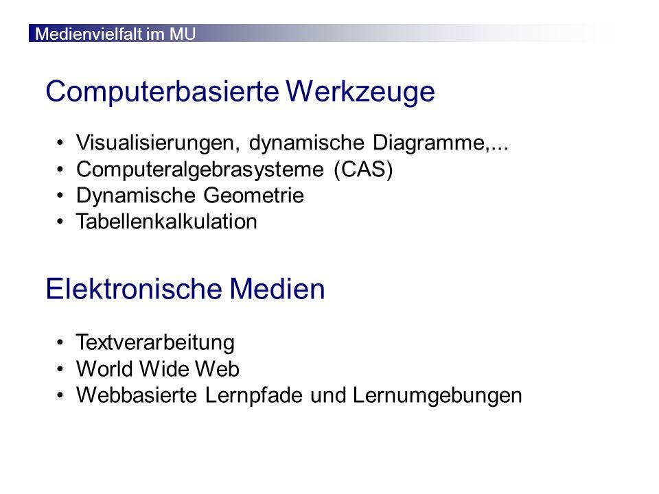 Medienvielfalt im MU Computerbasierte Werkzeuge Visualisierungen, dynamische Diagramme,...