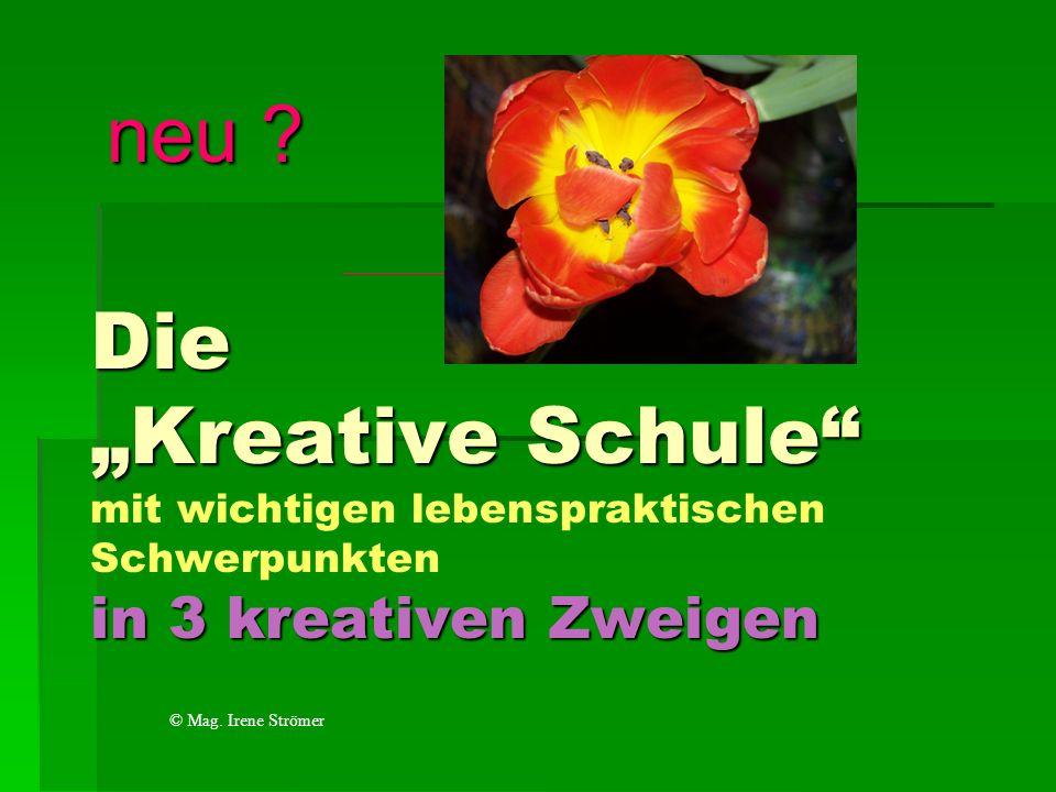 Die Kreative Schule in 3 kreativen Zweigen Die Kreative Schule mit wichtigen lebenspraktischen Schwerpunkten in 3 kreativen Zweigen neu ? © Mag. Irene