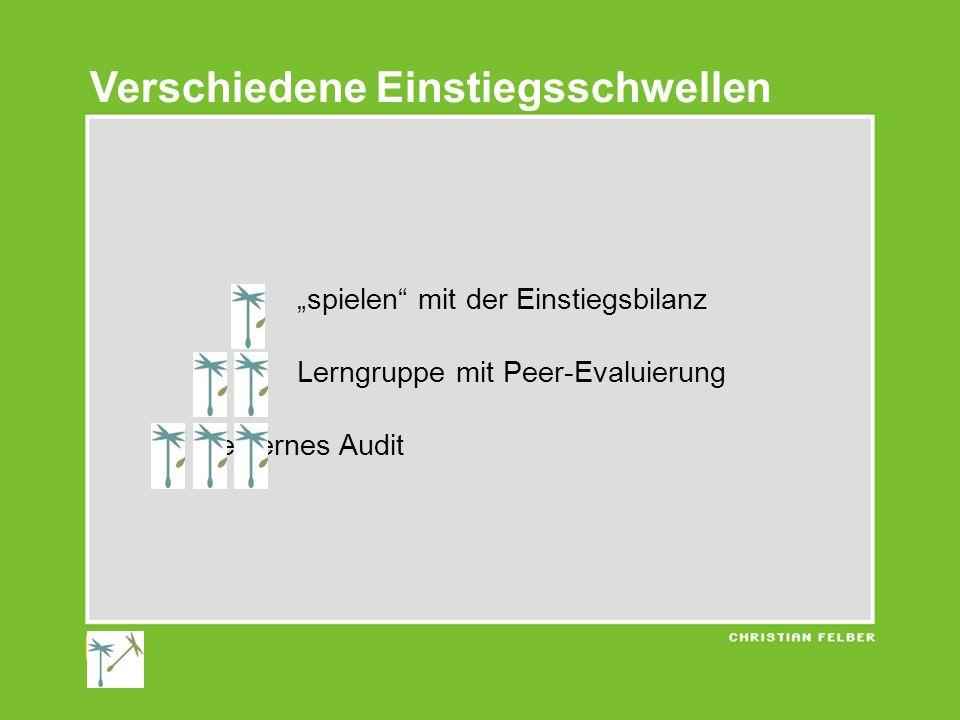 Verschiedene Einstiegsschwellen spielen mit der Einstiegsbilanz Lerngruppe mit Peer-Evaluierung externes Audit