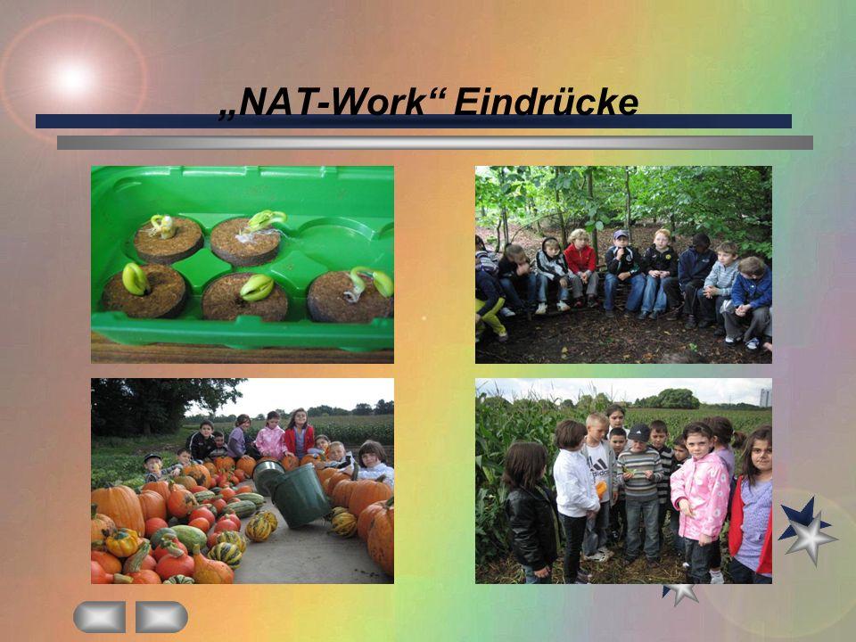 NAT-Work Eindrücke
