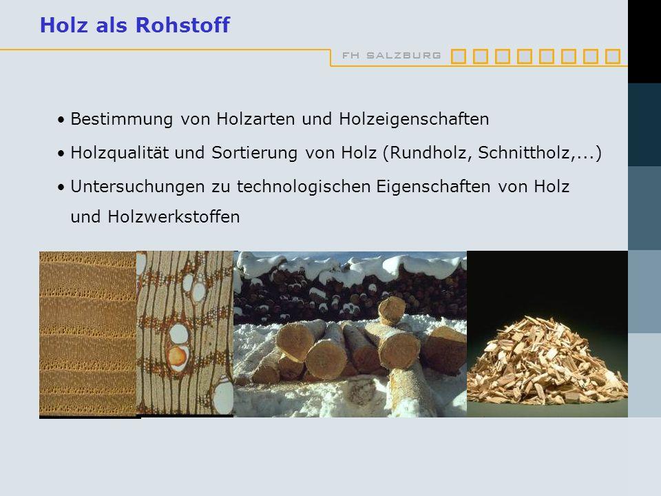 fh salzburg Holz als Rohstoff Bestimmung von Holzarten und Holzeigenschaften Holzqualität und Sortierung von Holz (Rundholz, Schnittholz,...) Untersuchungen zu technologischen Eigenschaften von Holz und Holzwerkstoffen