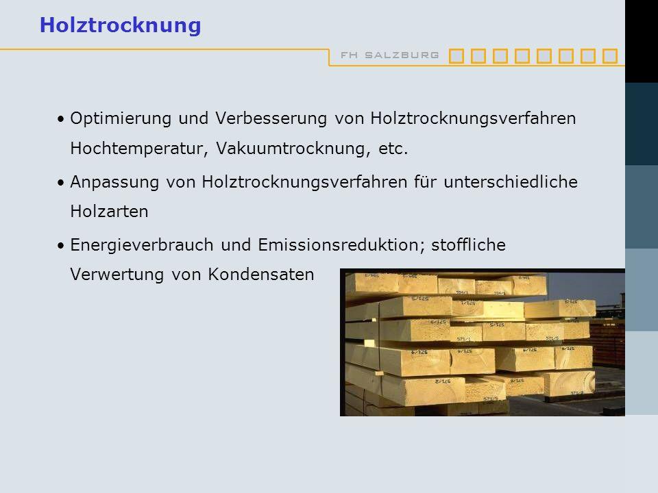 fh salzburg Holztrocknung Optimierung und Verbesserung von Holztrocknungsverfahren Hochtemperatur, Vakuumtrocknung, etc. Anpassung von Holztrocknungsv