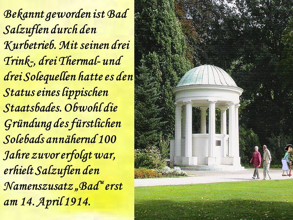 Charakteristisch für Bad Salzuflen sind die salzhaltigen Quellen, denen die Region den Namen Heilgarten Deutschlands verdankt.