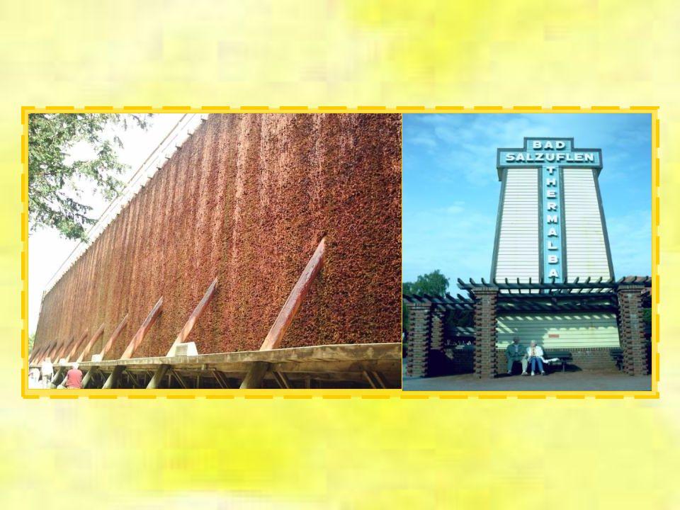 Ein Überbleibsel der Salzgewinnung sind die Gradierwerke mit einer Länge von früher insgesamt 424 m, heute ca. 300 m. Von den ursprünglich vier vorhan
