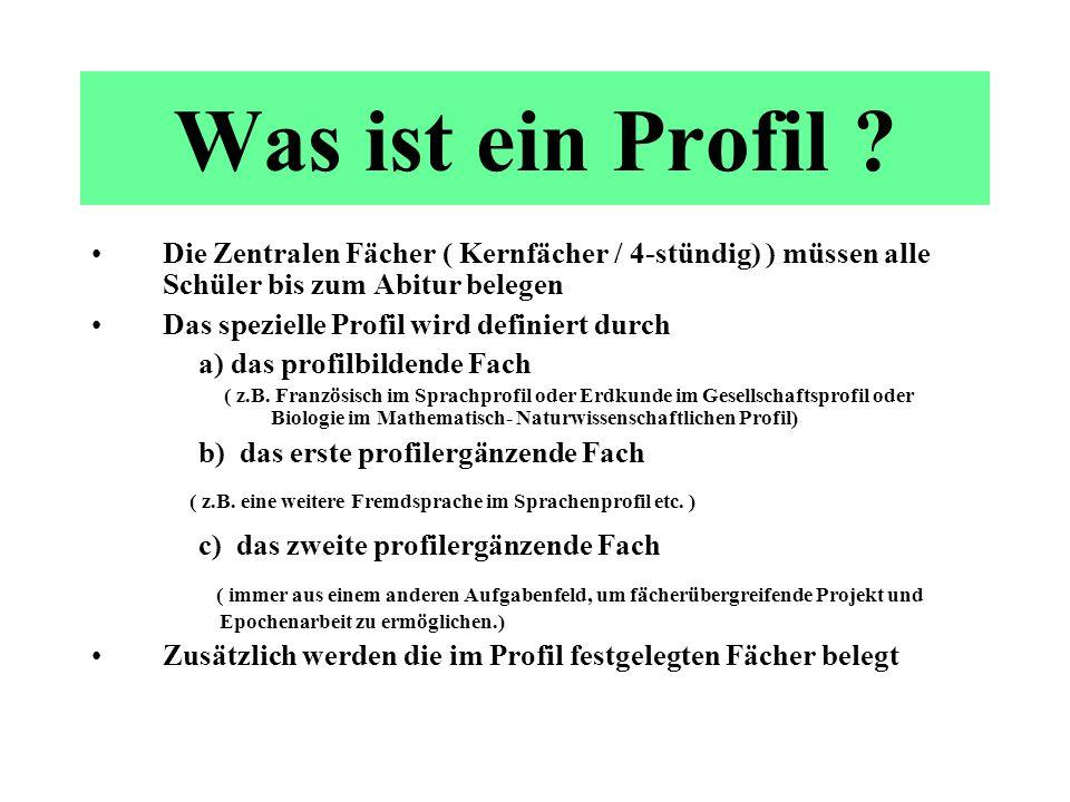 Mögliche HeLa – Profile 2008 Jahrgang 11 ca.