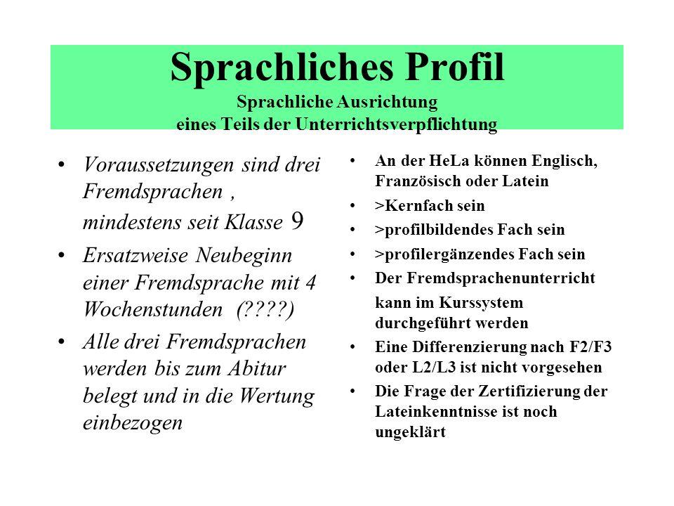 Modell eines Sprachlichen Profils 11.