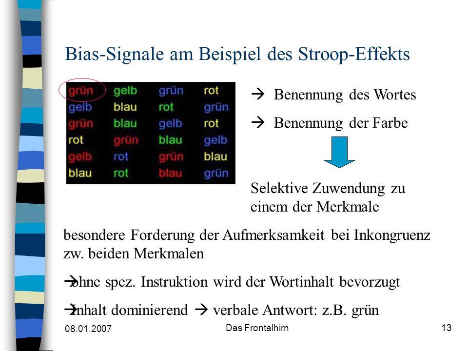08.01.2007 Das Frontalhirn13 Bias-Signale am Beispiel des Stroop-Effekts Benennung des Wortes Benennung der Farbe besondere Forderung der Aufmerksamkeit bei Inkongruenz zw.