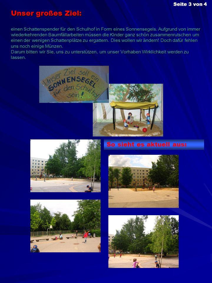 Unser großes Ziel: einen Schattenspender für den Schulhof in Form eines Sonnensegels. Aufgrund von immer wiederkehrenden Baumfällarbeiten müssen die K