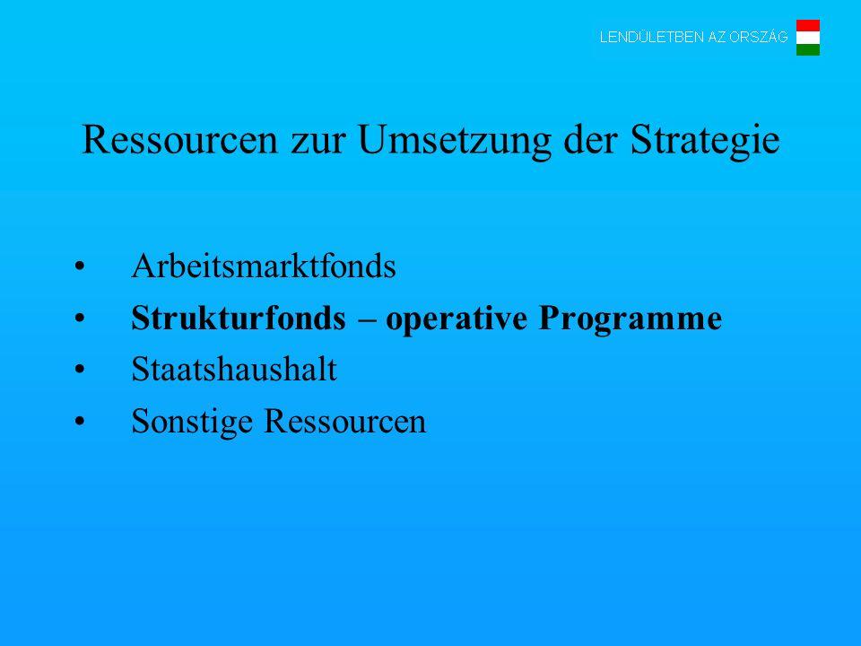 Ressourcen zur Umsetzung der Strategie Arbeitsmarktfonds Strukturfonds – operative Programme Staatshaushalt Sonstige Ressourcen