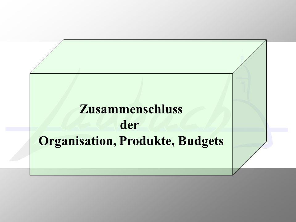 Zusammenschluss der Organisation, Produkte, Budgets