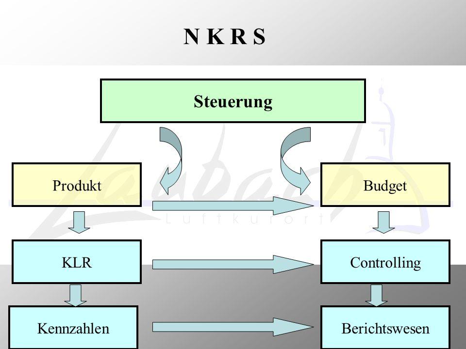 Die Bausteine von NKRS Organisation